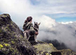 Why Dogs Are Good For Your Health