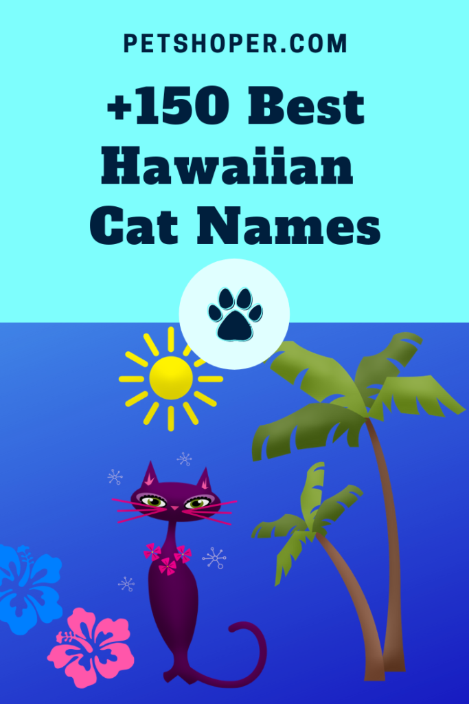 Hawaiian Cat Names pin